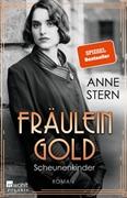 Bild von Stern, Anne: Fräulein Gold: Scheunenkinder